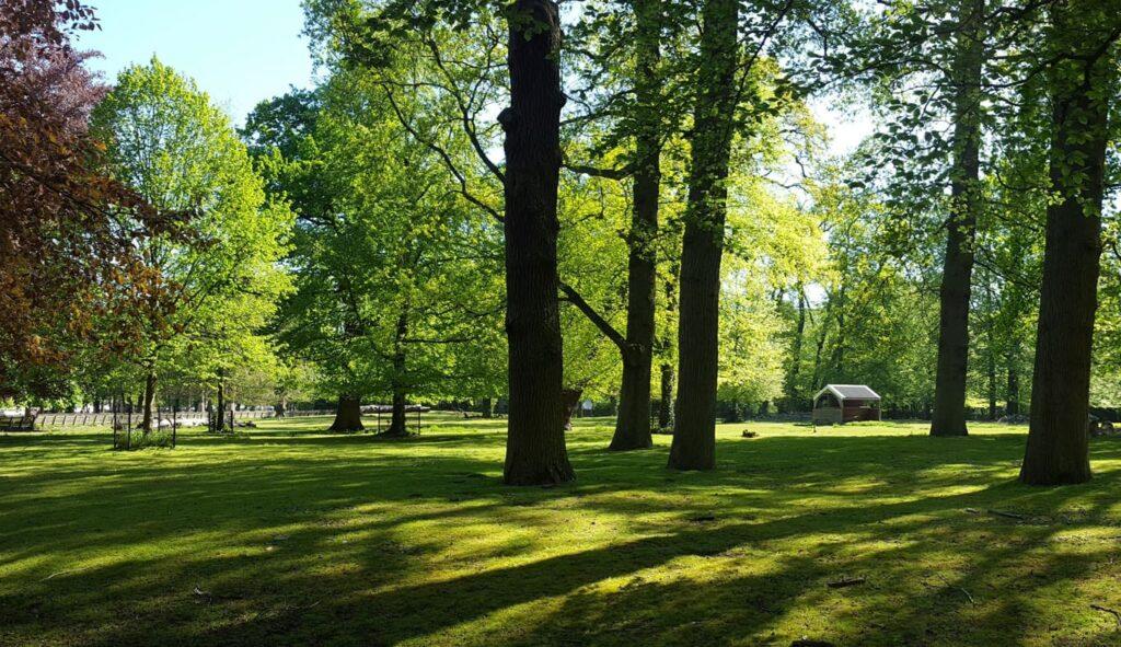 Personal training buiten. Haarlemmerhout
